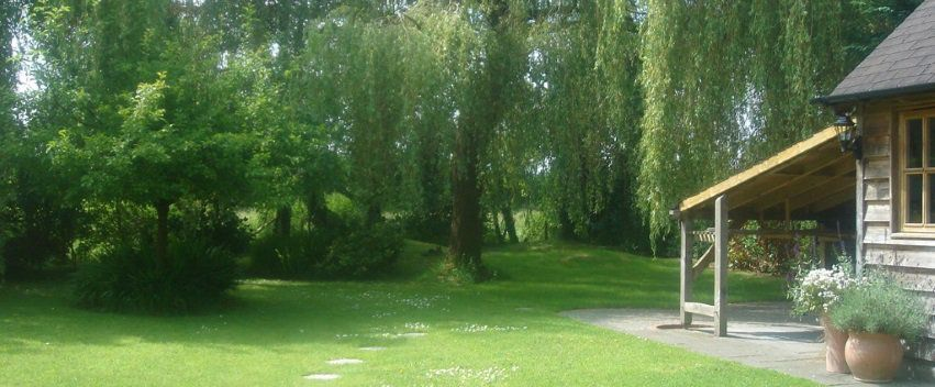 Lovely outlook onto garden for Yoga and Meditation in Guildford